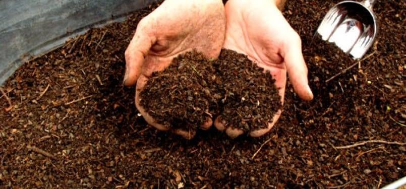 Tips Memilih Mesin Pencacah Kompos